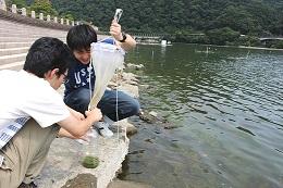 相模湖プランクトン採取3